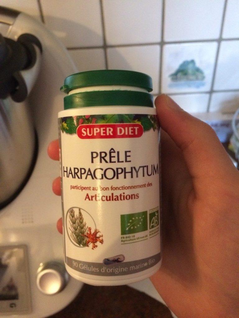 vertus Harpagophytum